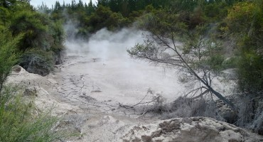 Boiling Mud Pool - Waiotapu, New Zealand