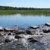 Lake Itasca – Minnesota, USA