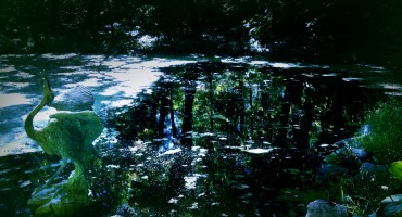 Landscape Arboretum - Minnesota, USA