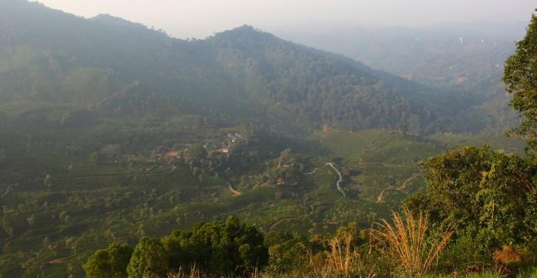 Munnar City Overlook – Munnar, India