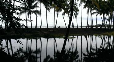 Punalu'u Black Sand Beach - Hawaii, USA
