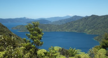 Queen Charlotte Track - New Zealand