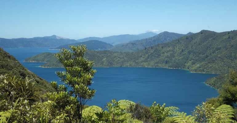 Queen Charlotte Track – New Zealand