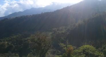 Quetzal Trail - Chiriqui, Panama