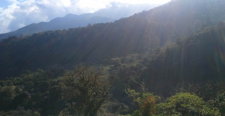 Quetzal Trail – Chiriqui, Panama