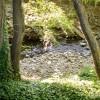 Santa Rosa Creek – California, USA