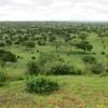 Tarangire National Park – Tanzania