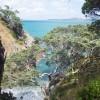 Waiheke Island – New Zealand