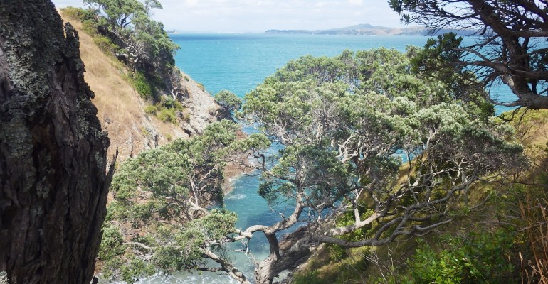 Waiheke Island – New Zealand
