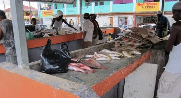Conchshell Bay Fish Market – Belize City, Belize