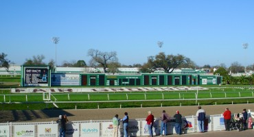 Fair Grounds Race Course - New Orleans, USA