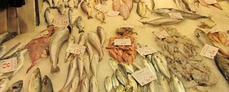 Fish Market – Thessaloniki, Greece