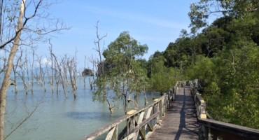 Bako National Park - Sarawak, Malaysia