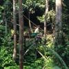 Semenggoh Wildlife Center – Sarawak, Malaysia