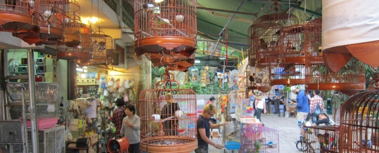Yuen Po Street Bird Garden – Hong Kong, China
