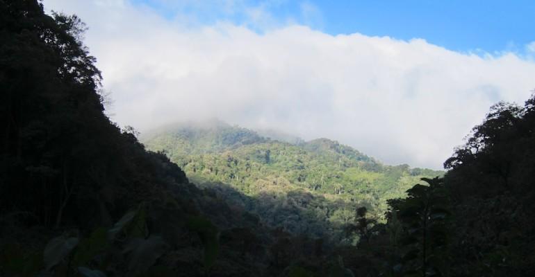 Pipeline Trail – Boquete, Panama