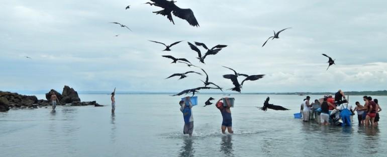Fisherman's Catch – Mompiche, Ecuador