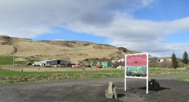 Sheep Farm – Kirkjubæjarklaustur, Iceland