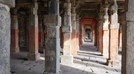 Bats at Daultabad Fort – Aurangabad, India