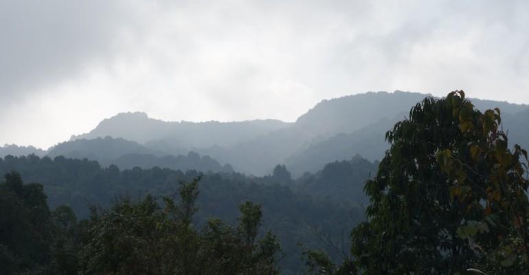 Morning Birds – Chisapani, Nepal