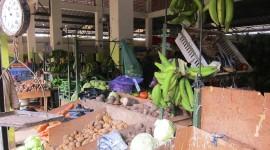 Fruit Market – Constanza, Dominican Republic
