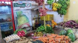 Roadside Market – Samaná, Dominican Republic
