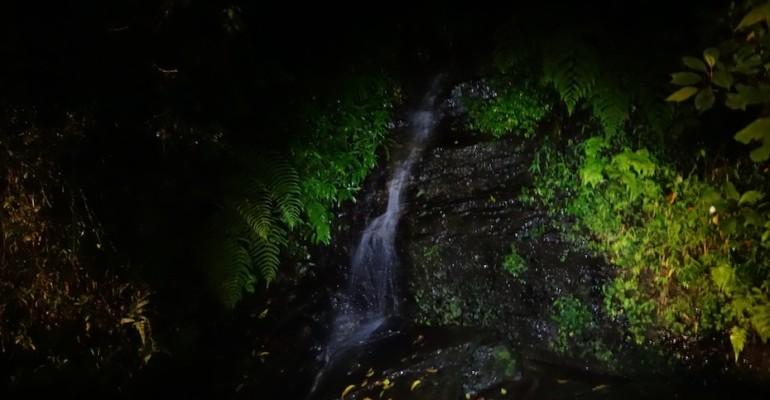 Nighttime – Ranomafana National Park, Madagascar