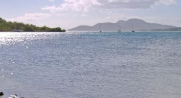 Island Ocean - Vieques, Puerto Rico
