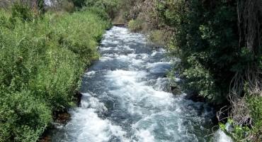 Tributary of Jordan River - Israel