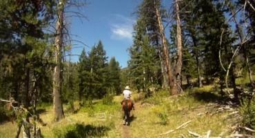 Horseback Riding – Wyoming, USA