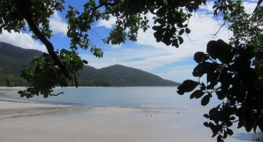 Cape Tribulation – Queensland, Australia