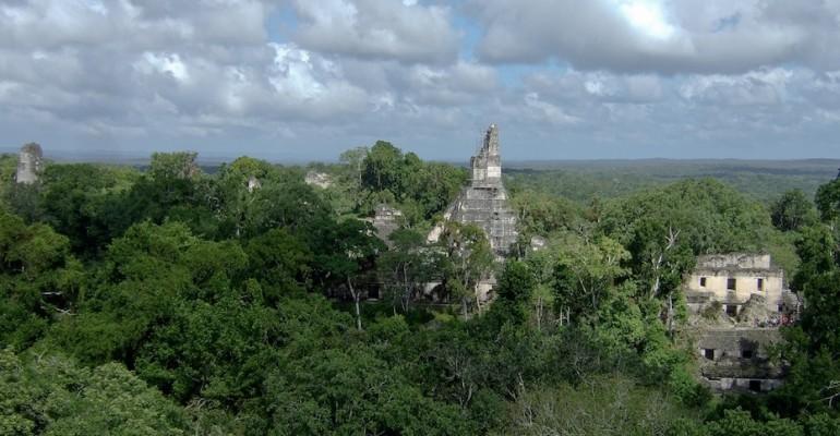 Howler Monkeys – Tikal, Guatemala