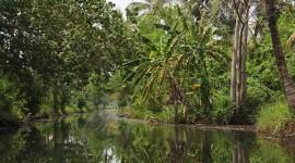 Kerala Backwaters – Kerala, India