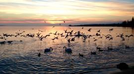 Lake Geneva Sunset – Lausanne, Switzerland