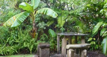 Rainfall - Santa Elena, Costa Rica