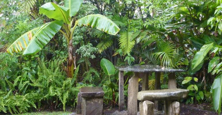 Rainfall – Santa Elena, Costa Rica