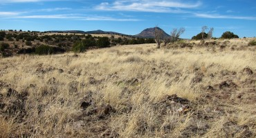 Savanna Wind – Arizona, USA