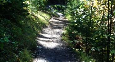 Superior Hiking Trail - Minnesota, USA