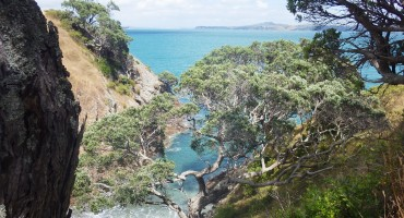 Waiheke Island - New Zealand