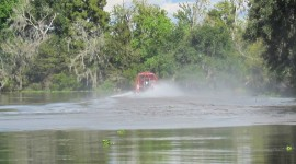 Jean Lefitte National Park – Louisiana, USA