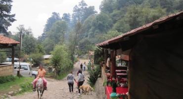 Los Dinamos Village – Mexico City