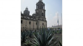 Metropolitan Cathedral Bells – Mexico City