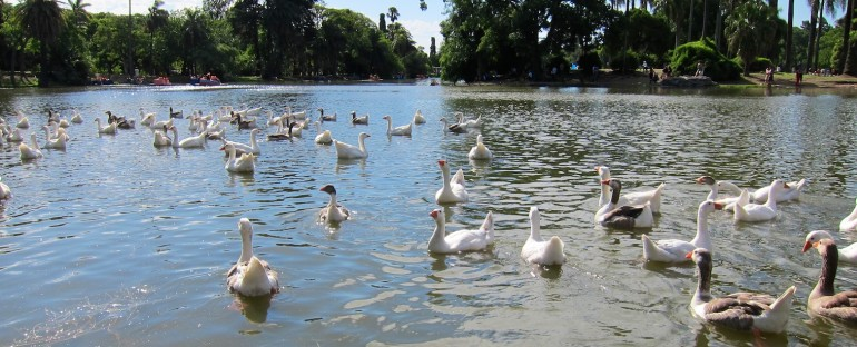 Parque Tres de Febrero – Buenos Aires, Argentina