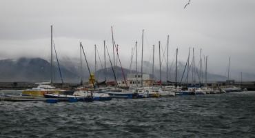 Windy Harbor - Reykjavík, Iceland