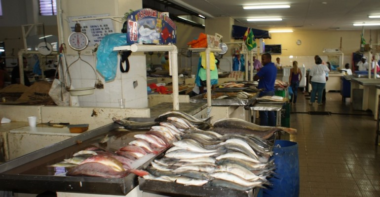 Local Fish Market – Panama City, Panama