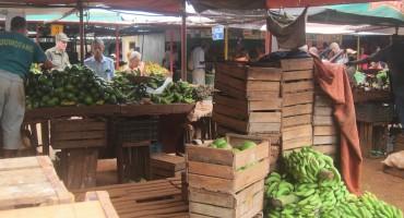 Morning Market – Havana, Cuba