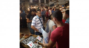 Athens Fish Market – Greece