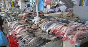 Seafood Market – Panama City, Panama