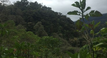 The Lost Waterfalls Trail – Boquete, Panama