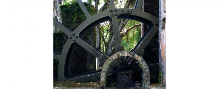 Tryall Water Wheel – Montego Bay, Jamaica